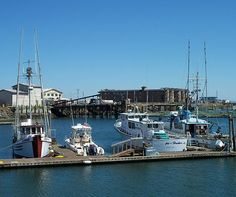 Westport Marina 2 Photograph by Chalet Roome-Rigdon - Westport Marina 2 Fine Art Prints and Posters for Sale
