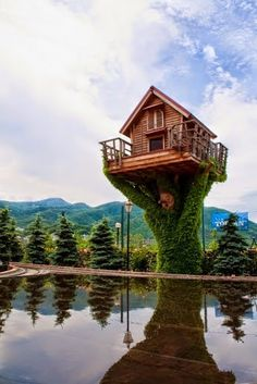 Google+ Oh Nice Tree House