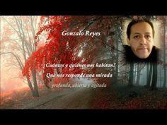 ANONYMA VENECIANA: LA NOCHE QUE NO ACABA, de Isaki Lacuesta