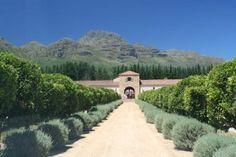 Waterford Wine Estate, Stellenbosch