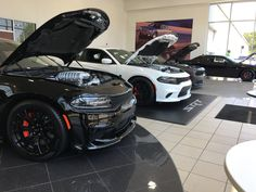 Dodge Srt, Chrysler Dodge Jeep, Dodge Models, Grand Caravan, New Inventory,  Charger, Showroom, Crown, Corona, Fashion Showroom, Crown Royal Bags, Crowns