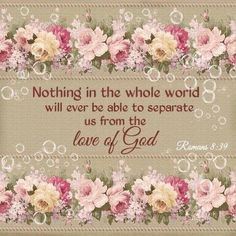 """""""nor height nor depth, nor anything else in all creation, will be able to separate us from the love of God in Christ Jesus our Lord."""" Romans ESV AMEN AND AMEN! Thank you sweet Dana. Biblical Quotes, Bible Verses Quotes, Bible Scriptures, Gospel Bible, Godly Qoutes, Favorite Bible Verses, Spiritual Inspiration, Daily Inspiration, Christian Inspiration"""