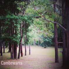 Cambewarra.. Home away from home