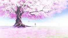 Explore Anime Cherry Blossom Wallpaper on WallpaperSafari Anime Cherry Blossom, Cherry Blossom Wallpaper, Anime Kunst, Anime Art, Casa Anime, Cherry Blooms, Anime Scenery Wallpaper, Kawaii Faces, Graphisches Design