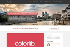 WordPress is indisputably the most preferred CMS platform on the web. Due to the popularity and development of WordPress CMS, themes that are specially made for sites powered by WordPress also gained considerable fame in the market. Users love WordPress themes because it is painless to set up and can be used to create a website like blog, personal, corporate and portfolio site. However, quality...
