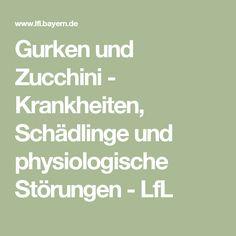 Gurken und Zucchini - Krankheiten, Schädlinge und physiologische Störungen  - LfL