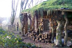House built with cordwood; how far would you go to go green?