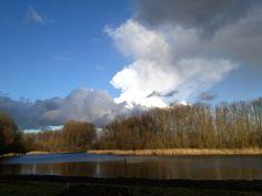 Bleiswijk The Netherlands