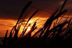 Danke an Marianne für dieses tolle Foto!  #Sonnenuntergang #Dänemark