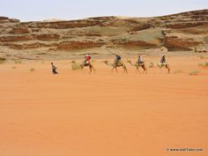 Camel Ride Wadi Rum Jordan