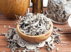 Sage Herb: History, Nutrition Facts, Health Benefits, Side Effects, and Fun Facts Sage Herb, Side Effects, Health Benefits, Fun Facts, Salvia Officinalis, Herbs, Nutrition, Cooking, History