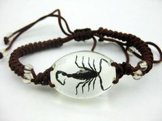 FREE SHIPPING 12 Fashion Bracelet Charm With Black Scorpion Insect Specimens Jewelry