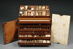 132: Mahogany Herbal Specimen Chest, late 19th century, : Lot 132