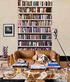 La libreria dei miei sogni !!!
