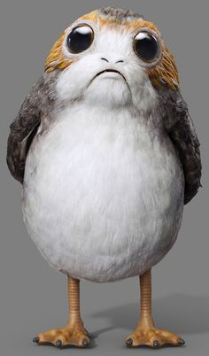 Porgs - Utterly adorable, but even more useless than the Ewoks...