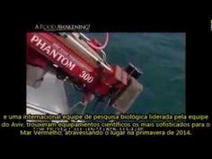 Ciêntistas Descobrem os Carros de Faraó no Fundo do Mar Vermelho