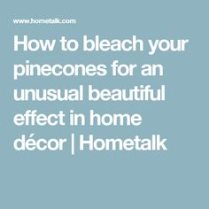 How to bleach your pinecones for an unusual beautiful effect in home décor | Hometalk