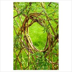 Circular 'window' woven into a willow screen - RHS Garden Harlow Carr, Harroga. - Stock photo from GAP Gardens, garden & plant photography Quilling Paper Craft, Plant Pictures, North Yorkshire, Land Art, Fences, Grapevine Wreath, Garden Plants, Gates, Grape Vines