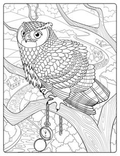 485 Best Birds To Color Images Coloring Pages Coloring Books