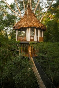 TREEHOUSE LODGE RESORT, IQUITOS, PERU
