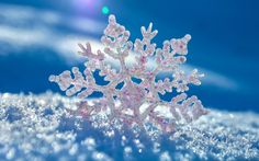 A Christmas Tale: The Pearl Snowflake