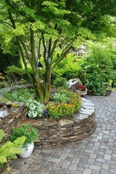 Stone, raised bed.... nice way to accent a tree. | Dreaming Gardens