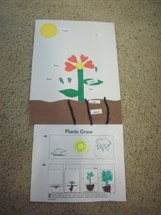 Enchanted Homeschooling Mom: Spring Storybooks, Lessons, Projects, Art and Links!