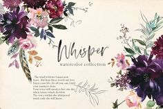 Ad: Whisper Watercolor Floral Clipart by whiteheartdesign on Whisper - romantic and bright watercolor floral clipart collection. Inspired by north forest greenery and garden flowers, romance of autumn Business Illustration, Pencil Illustration, Watercolor Illustration, Graphic Illustration, Creative Illustration, Floral Illustrations, Watercolor And Ink, Watercolor Flowers, Watercolor Design
