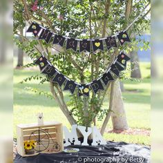 Create your own photography props! Birthday banner was not only inexpensive but fun to craft! #ArtsAndCrafts #ABlissfulMemory #photographybyBetsy #EventsByBetsy