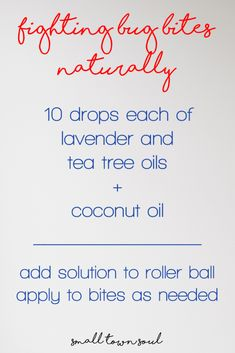 Fighting Bug Bites Naturally: Essential Oils Remedy