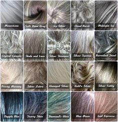 Gray color chart -  because not all gray hair is the same! @Mary Powers Powers Anne Costa Minerva