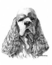 Cocker Spaniel Dog Bill Harrah Matted Card Canine Art