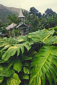 Old church in Halawa Valley, Molokai, Hawaii