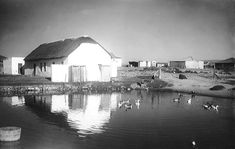 The Damhuis, Melkbosstrand circa 1900 - Cape Town photos / South Africa African History, Cape Town, South Africa, Cabin, House Styles, Places, Investing, Cabins, Cottage