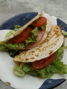 Quesadillas de tortilla de harina de trigo. Mexican food/Comida Mexicana