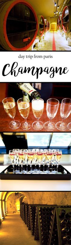 Tips for visiting and tasting Champagne as a day trip from Paris