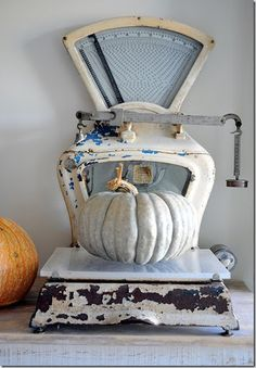 i need an old scale to weigh the pumpkinscan anyone help