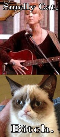Oh, come on Grumpy Cat! Everybody loves Phoebe!