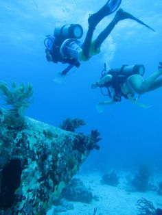 SCUBA dive in the beautiful British Virgin Islands