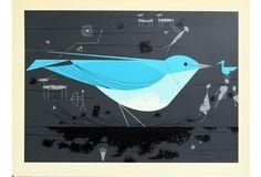 Mtn Bluebird_500.jpg