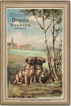 DRO4-2 cacao Droste - two small dogs | Flickr - Photo Sharing!