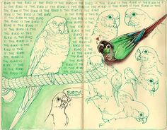 I like the ambient background surrounding the outlined drawings and may try this on book pages