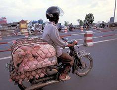 伝説の原付バイク「ホンダ・スーパーカブ」は本当に伝説級なのか検証するムービー - GIGAZINE