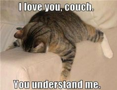 Must be what cats do ,because that is where mine always lays
