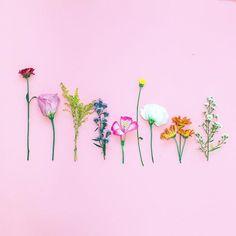 #spring #flowers #flowerslovers