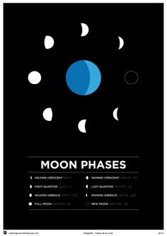 Moon Phases - #personal #project #moon #phases #month #infographic #graphic #poster #minimal