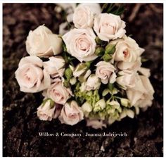 Willow & Company | Joanna Jadrijevich. Love what you do, do what you love ..... My Flower, Flowers, Rose, Plants, Pink, Plant, Roses, Royal Icing Flowers, Flower
