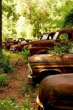 Vintage Ford Trucks Not a chevy, but pretyy cool. Amazing shots of Vintage Ford Trucks - so unique! Old Pickup, Pickup Trucks, Lifted Trucks, Lifted Ford, Farm Trucks, Chevy Trucks, Abandoned Cars, Abandoned Places, Rat Rods