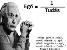 Albert Einstein, Knowledge, Science, Messages, Humor, Words, Memes, Funny, Quotes