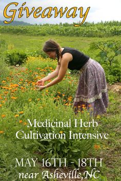 :: Giveaway for our Weekend Workshop on Cultivating Medicinal Herbs :: Winner receives one free admission to the workshop! Winner announced on September 9th *** Here's how you play: 1.Subscribe to our newsletter from our website's homepage. Note: If you are already subscribed to our newsletter move onto the next step. 2. Repin this post. 3. We hope you are inspired to follow our boards, but it's not required for entry. You can also enter on the school's Facebook and Instagram page.